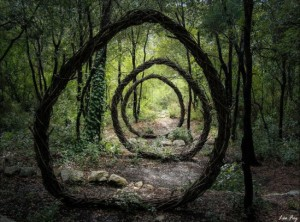forest-land-art-nature-spencer-byles-110