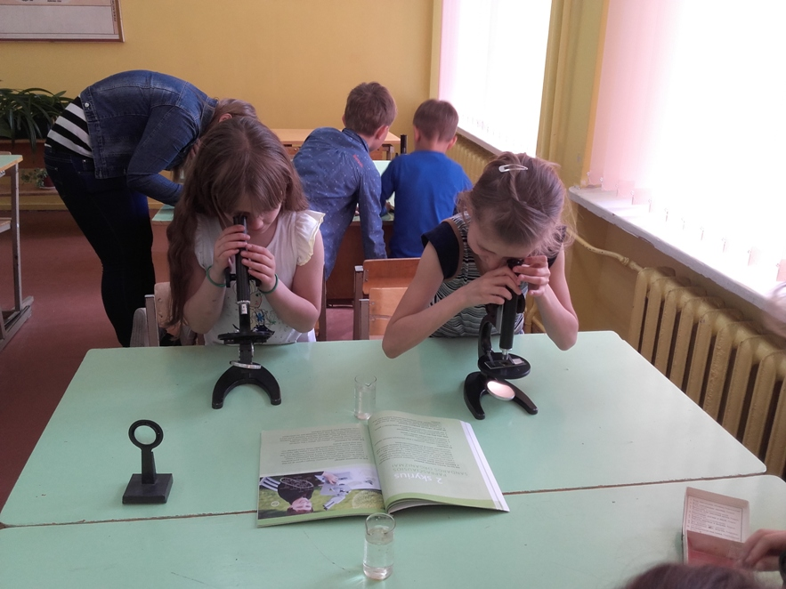 Panevezio gamtos mokykla1